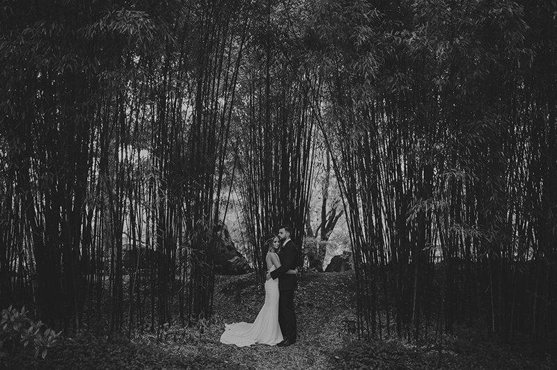 vancouver-wedding-fall-bamboo-trees-couple