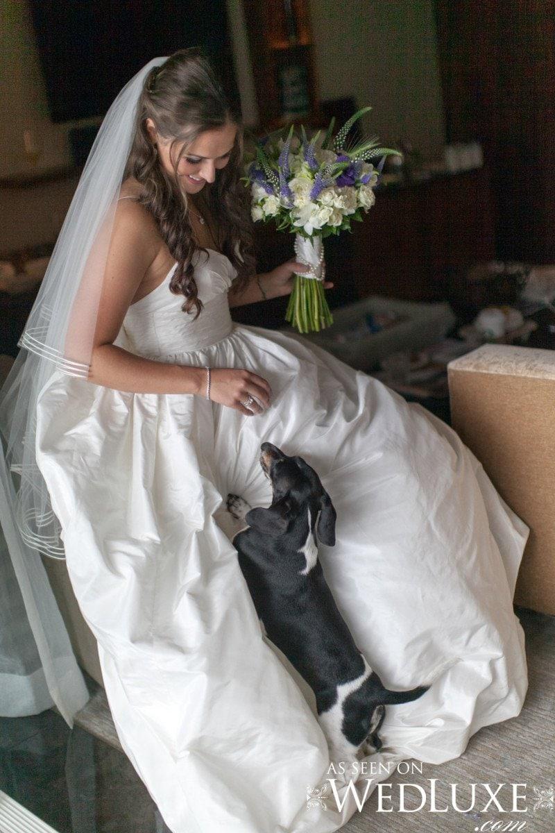 wiener dog wedding Alicia Keats Weddings